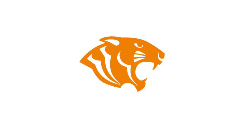 logo-tiger-group
